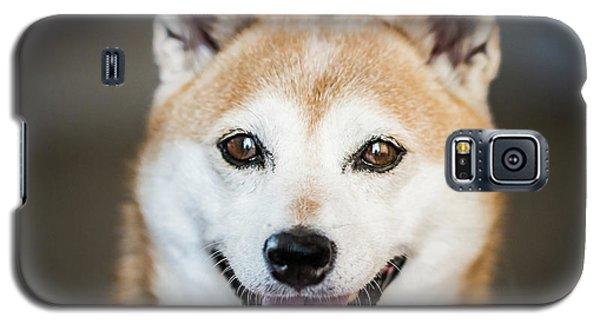 Shiba Inu Galaxy S5 Case