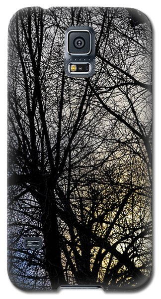 Sunset Sky And Trees Galaxy S5 Case