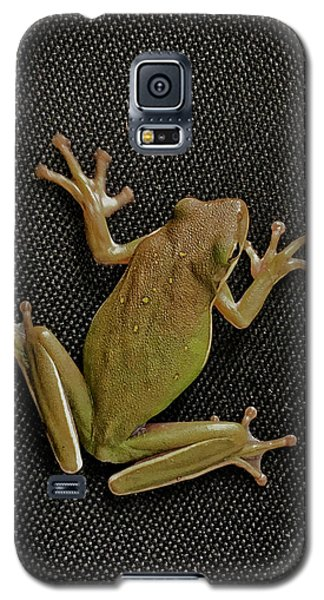 Tree Frog Galaxy S5 Case