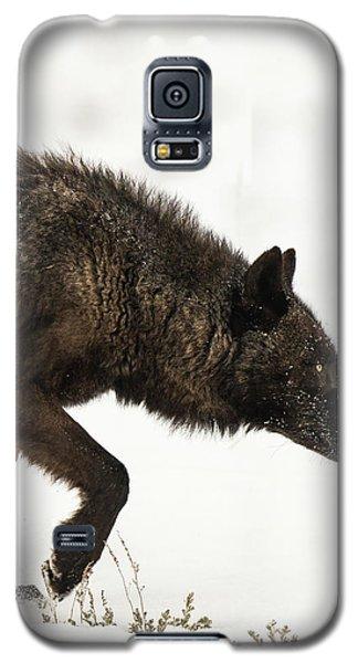 W46 Galaxy S5 Case
