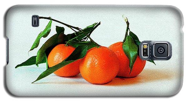 11--01-13 Studio. 3 Clementines Galaxy S5 Case