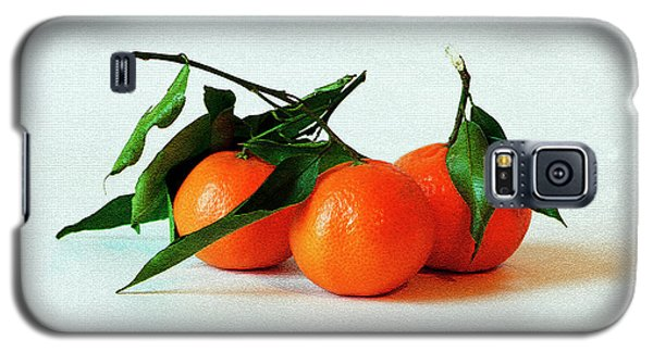 11--01-13 Studio. 3 Clementines Galaxy S5 Case