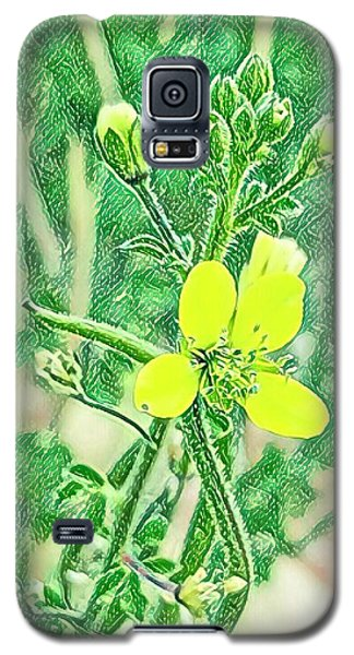Nature Galaxy S5 Case