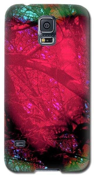2-16-2009ab Galaxy S5 Case