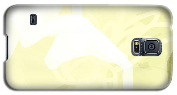 2 Galaxy S5 Case