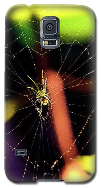 Web Of Hearts Galaxy S5 Case