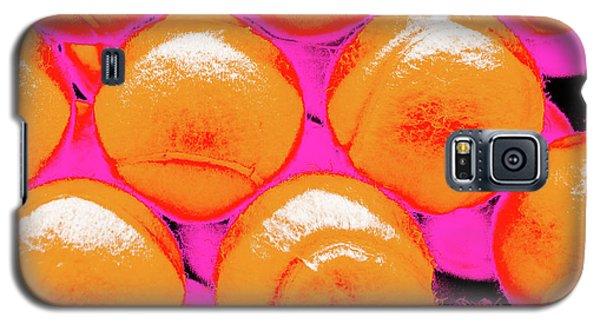 Pop Art Tennis Balls Galaxy S5 Case