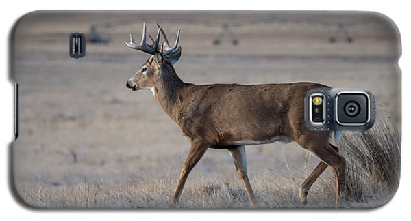 Rocky Mountain Deer Galaxy S5 Case
