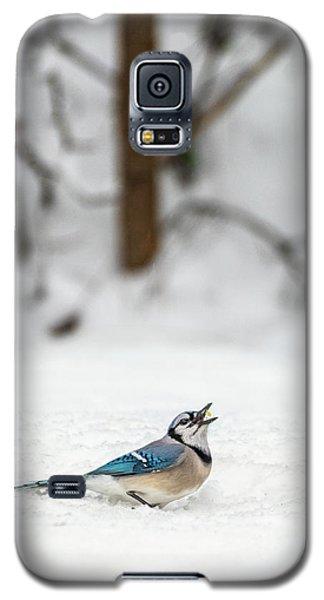 2019 First Snow Fall Galaxy S5 Case