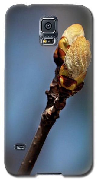Cherry Bud Galaxy S5 Case