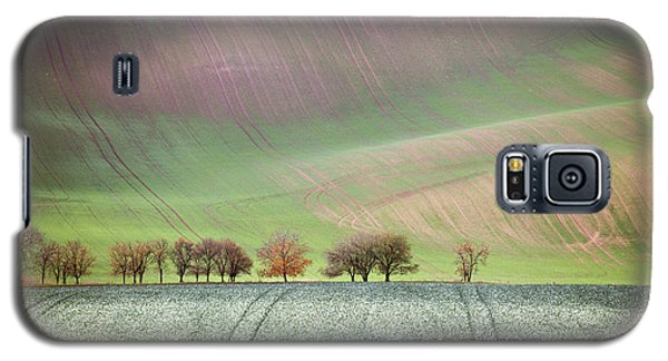Autumn In South Moravia 3 Galaxy S5 Case