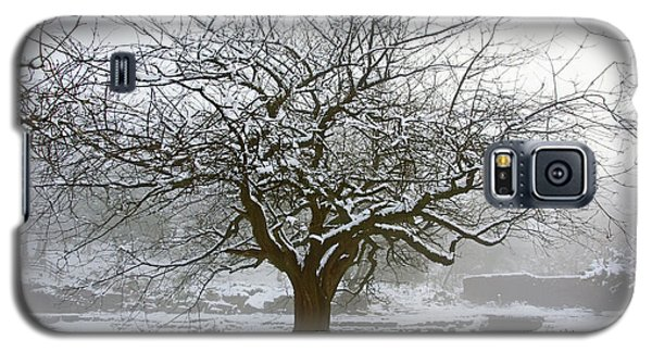 30/01/19  Rivington.  Japanese Pool. Snow Clad Tree. Galaxy S5 Case