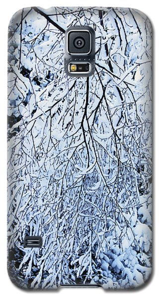 30/01/19  Rivington. Snow Covered Branches. Galaxy S5 Case