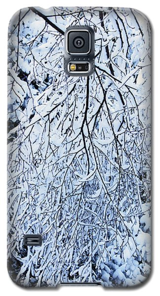 30/01/19  Rivington. Snow Covered Branches. Galaxy S5 Case