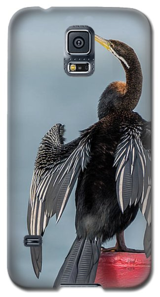 Australasian Darter Galaxy S5 Case