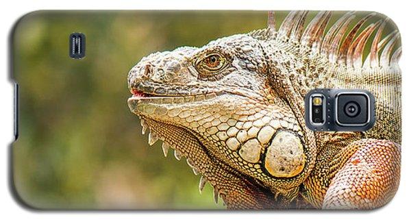 Green Iguana Galaxy S5 Case