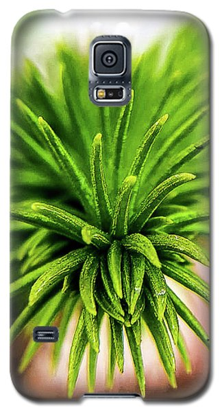 Green Spines Galaxy S5 Case