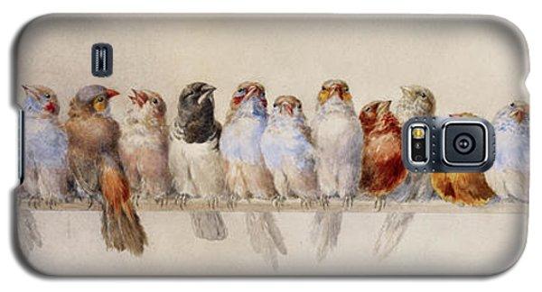 A Perch Of Birds  Galaxy S5 Case