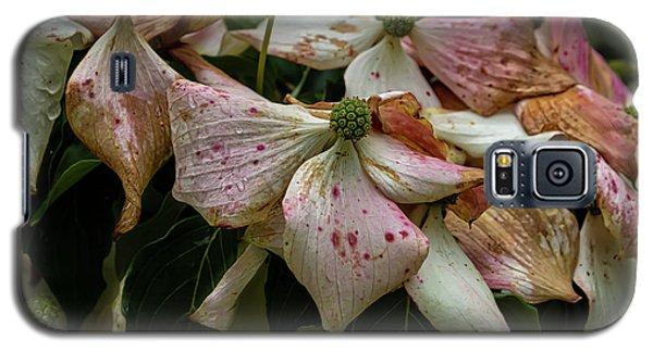 Flowering Dogwood Galaxy S5 Case