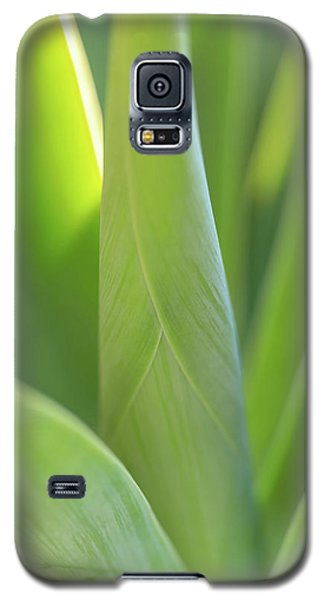 A Bouquet Of Leaves Galaxy S5 Case