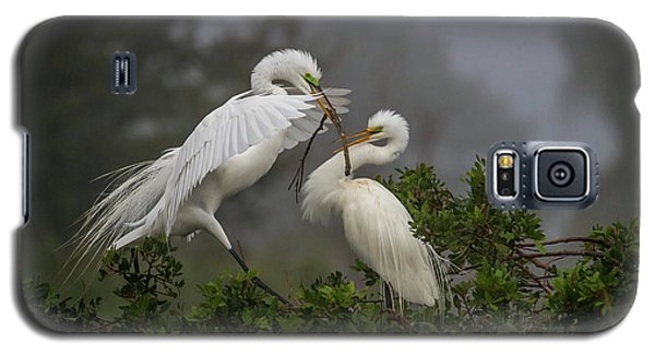 A Couple Of Birds Galaxy S5 Case