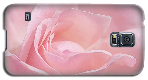 A Delicate Pink Rose Galaxy S5 Case