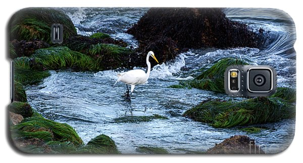 A Great Egret Watches The Incoming Tide Galaxy S5 Case