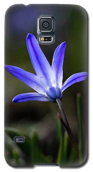 A Handful Of Light Galaxy S5 Case