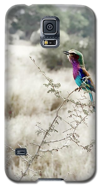 A Lilac Breasted Roller Sings, Desaturated Galaxy S5 Case