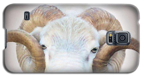 A Little Ram  Galaxy S5 Case