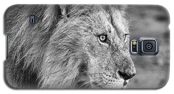 A Monochrome Male Lion Galaxy S5 Case