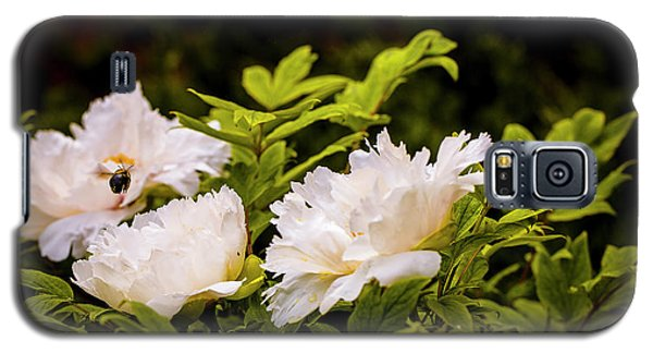 A Pollinator's Work Is Never Done Galaxy S5 Case