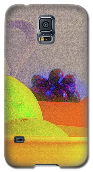 Abstract Fruit Art   106 Galaxy S5 Case