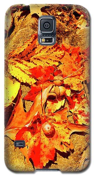 Acorns Fall Maple Oak Leaves Galaxy S5 Case