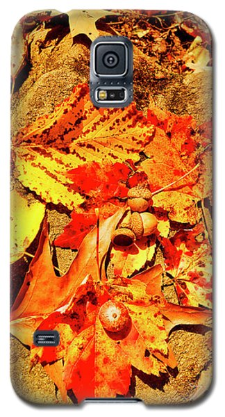 Acorns Fall Maple Oak Leaves Galaxy S5 Case