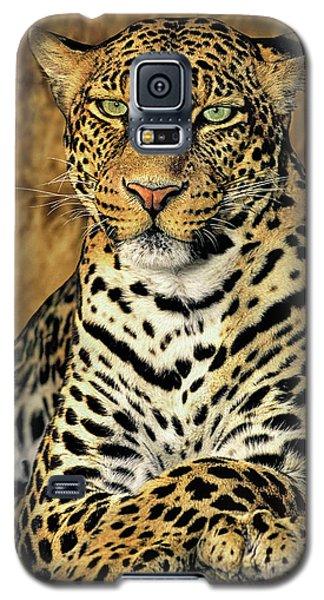 African Leopard Portrait Wildlife Rescue Galaxy S5 Case