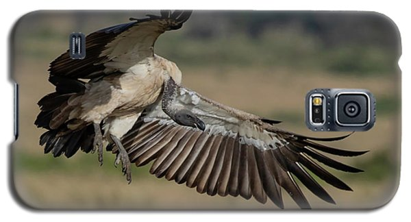 African White-backed Vulture Galaxy S5 Case
