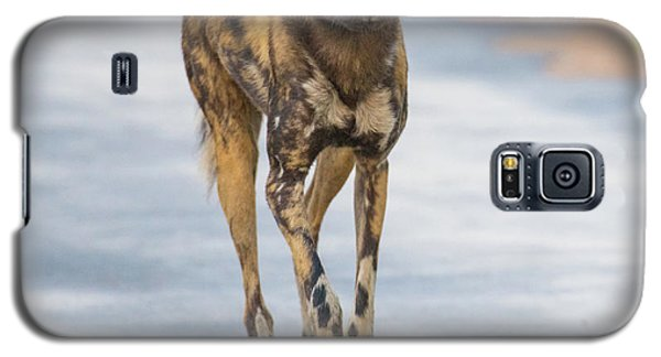 African Wild Dog Bouncing Galaxy S5 Case