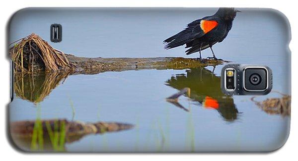 Agelaius Phoeniceus Galaxy S5 Case