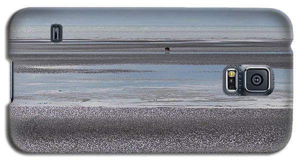 Alaska Brown Bear On The Shore Galaxy S5 Case