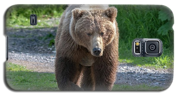 Alaskan Brown Bear Walking Towards You Galaxy S5 Case