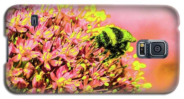 Allium With Bee 1 Galaxy S5 Case