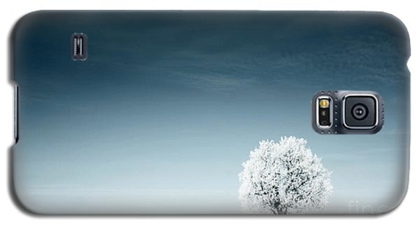 Icy Galaxy S5 Case - Alone Frozen Tree In Snowy Field And by Dudarev Mikhail