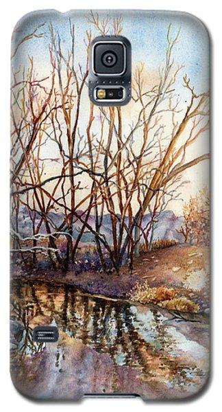 Icy Galaxy S5 Case - Along Boulder Creek by Anne Gifford
