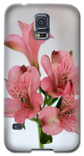 Alstroemeria Up Close Galaxy S5 Case