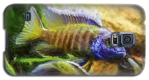 Amazing Peacock Cichlid Galaxy S5 Case