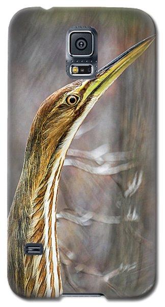 American Bittern Galaxy S5 Case