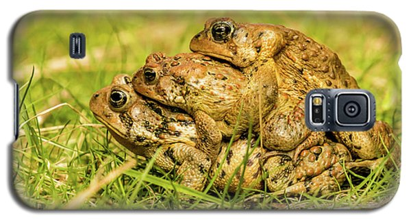 American Toad Western Brooke Pond, Grose M Galaxy S5 Case