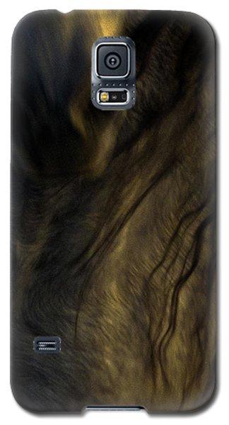 Americano 20 Galaxy S5 Case