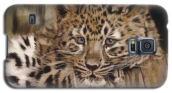 Amur Leopard Cub Galaxy S5 Case